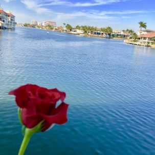 The Village Shops on Venetian Bay, Venetian Valentine Event, Valentine's Day, Waterfront Shopping and Dining, Naples Florida